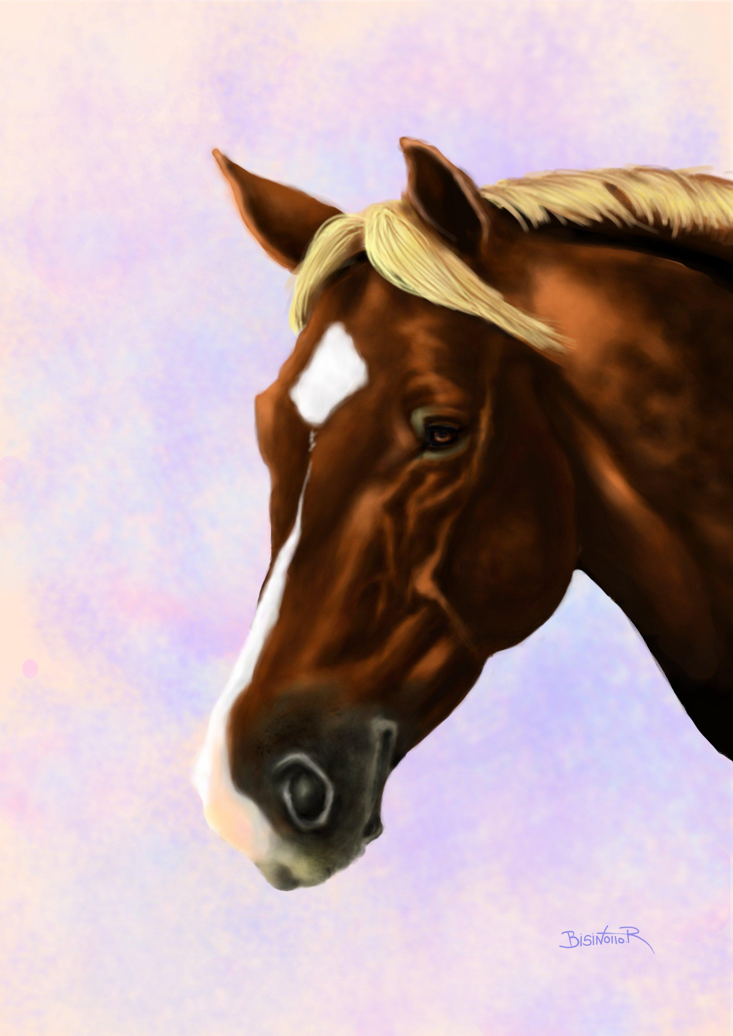 Pin dessin de chevaux peinture cheval degstubbs froblog on - Image tete de cheval ...